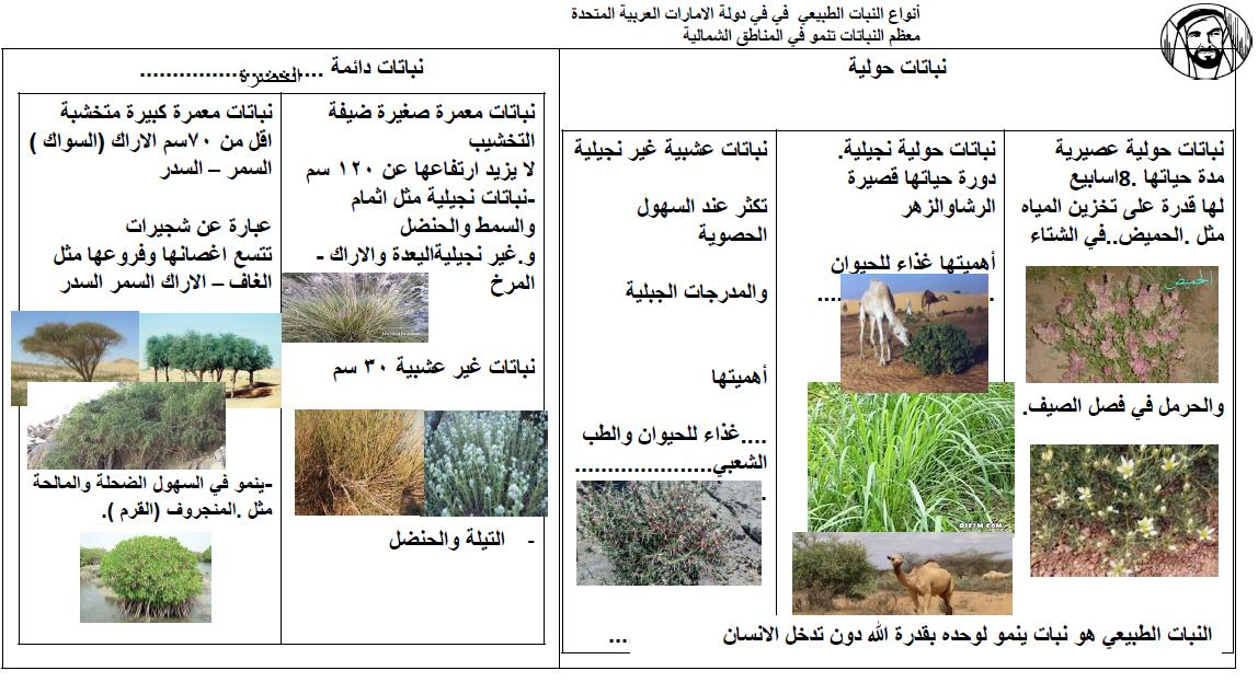 الدراسات الإجتماعية والتربية الوطنية أنواع النبات الطبيعي للصف التاسع ملفاتي