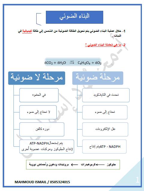 الأحياء ملخص البناء الضوئي للصف العاشر ملفاتي