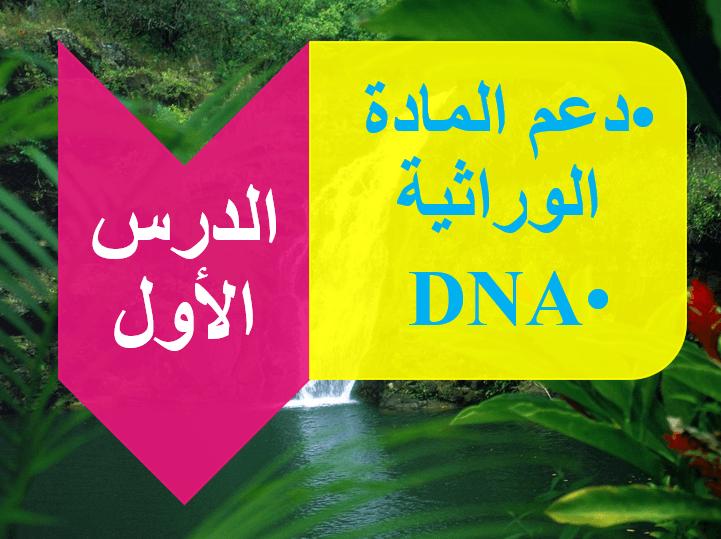 علم الوراثة الجزيئية بالانجليزي 15