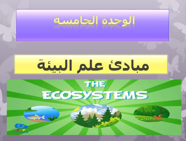 الأحياء بوربوينت درس مبادئ علم البيئة للصف التاسع ملفاتي