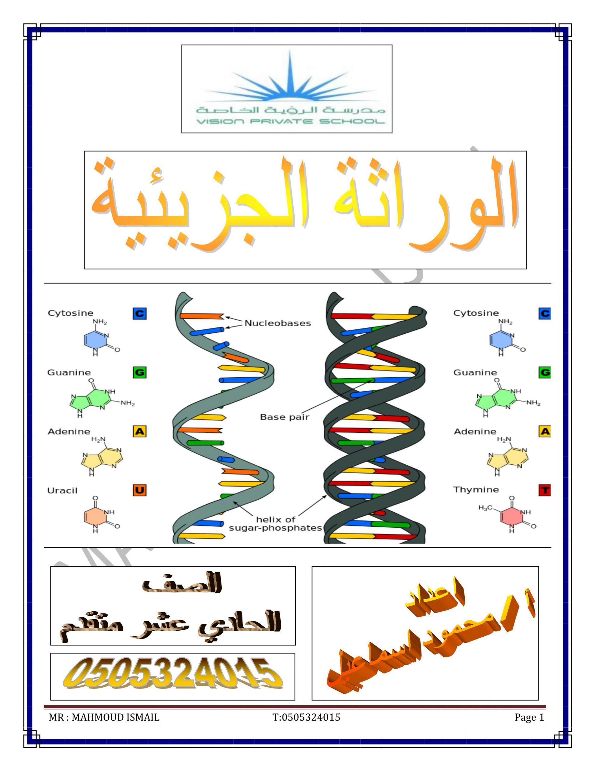 ملخص درس الوراثة الجزيئية الصف الحادي عشر متقدم مادة الاحياء