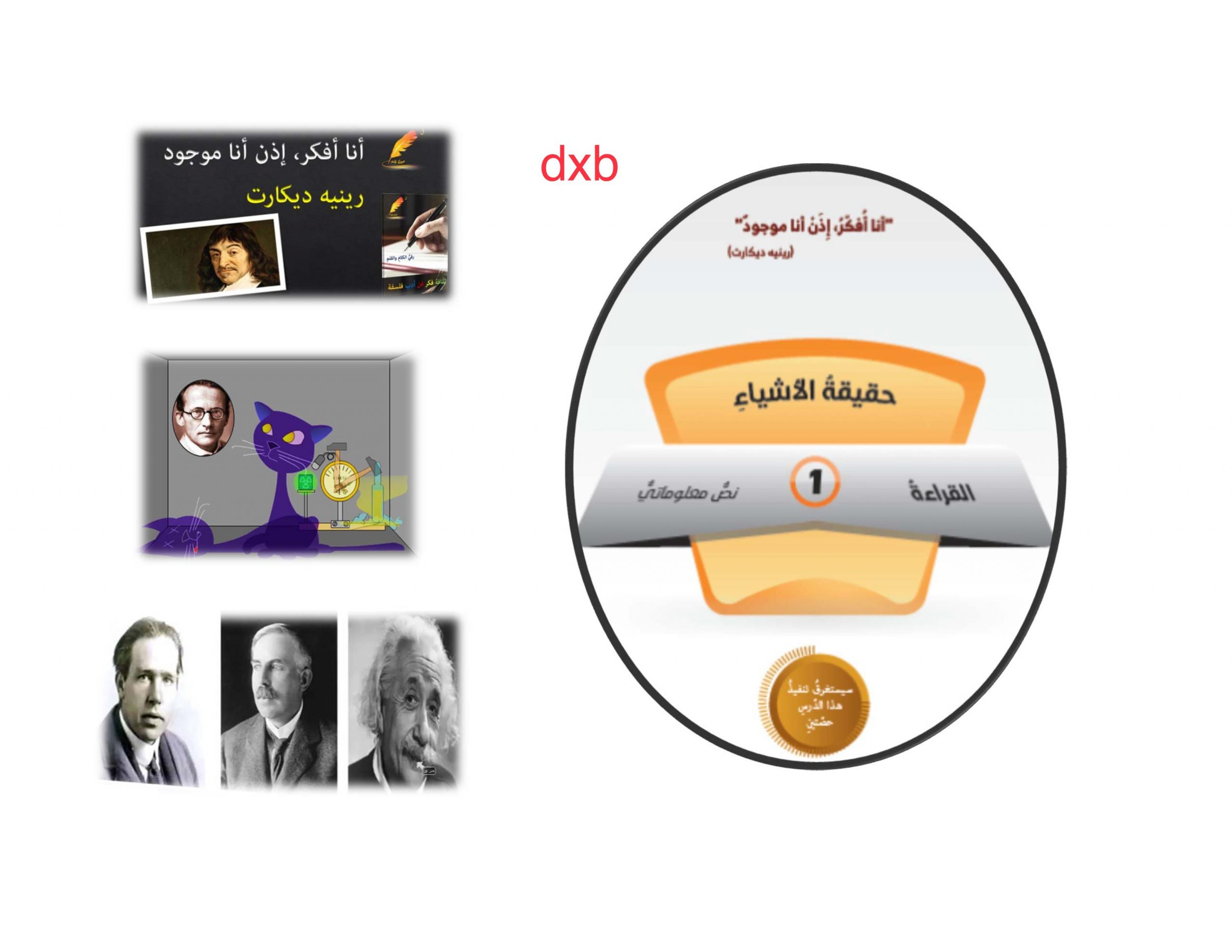 حل درس الاشياء الحقيقية الصف الثاني عشر مادة اللغة العربية