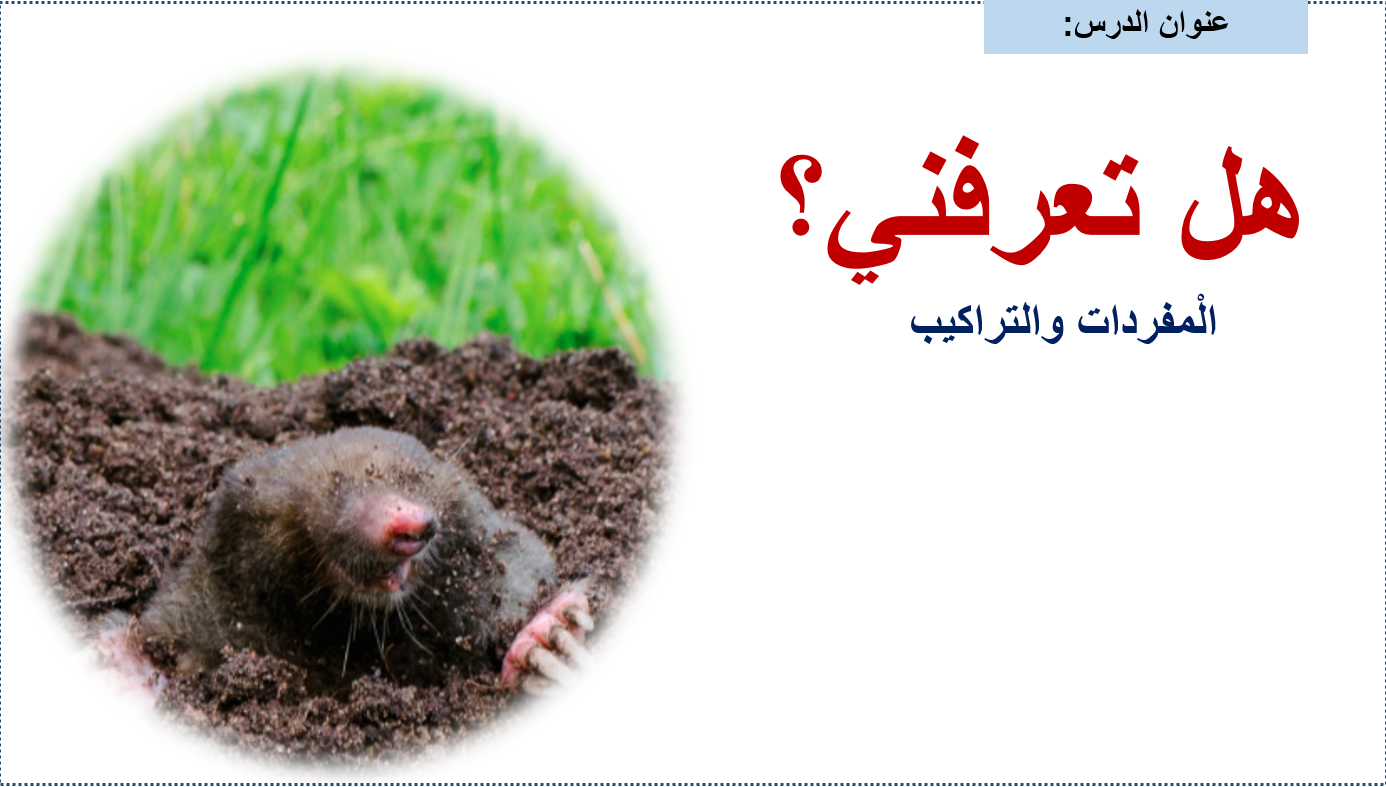 مفردات درس هل تعرفني الصف الثاني مادة اللغة العربية - بوربوينت